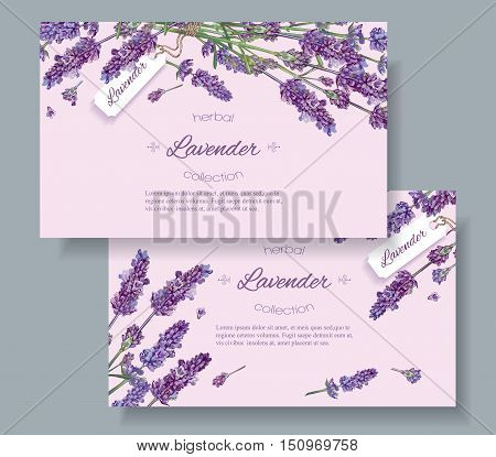 Lavender natural cosmetics horizontal banners on lilac background. Design for cosmetics, store, beauty salon, natural and organic products, health care products, aromatherapy.Vector illustration