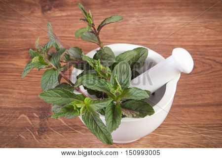 Fresh Natural Green Mint In Mortar, Healthy Lifestyle