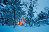 Winter fairy night - wooden cottage with warm light in blue snowy forest, silent winter weather. Sea poster