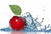 Постер, плакат: Красное яблоко и воды splash изолированные на белом