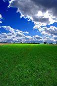 Beautiful Summer Landscape poster