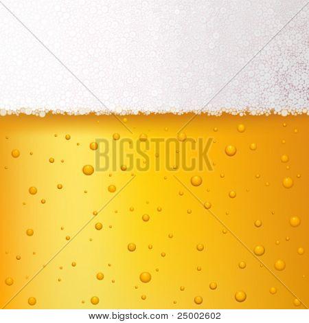 vector beer background