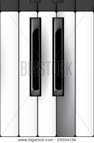 vector piano keyboard illustration