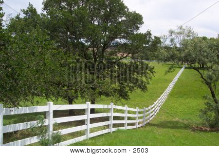Fence Into Forever poster