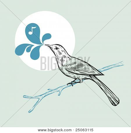 Hand-drawn bird on a branch. Vector illustration.
