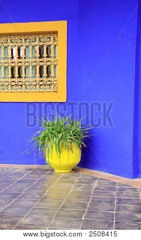 Yellow Pot, Blue Wall