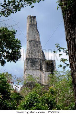 Tikal Skyscraper