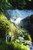 Clear Water In A Clear Glass Against A Background Of Green Moss With A Mountain River In The Backgro poster