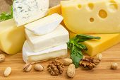 Pieces Of Different Hard, Medium-hard, Soft And Semi-soft Cheese With Mold, Various Nuts And Greens  poster