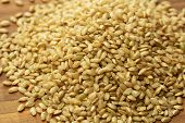 Genmai, or brown rice. The whole grain of rice of Japanese rice, which the germ or outer bran layers poster