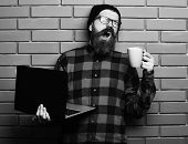 Bearded Man, Long Beard. Brutal Caucasian Yawning Unshaven Hipster Holding Laptop With Mag Or Cup In poster