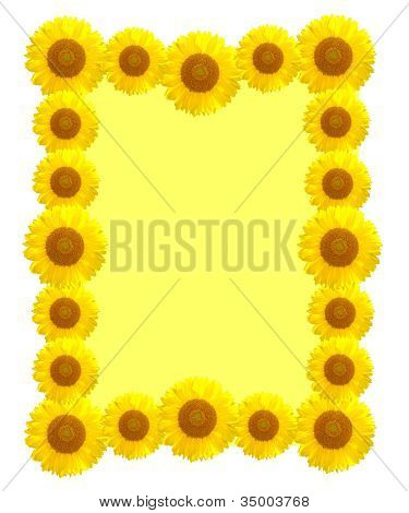 Beautiful Yellow Sunflower Frame