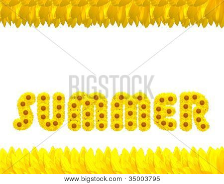 The Summer Season With Sunflowers