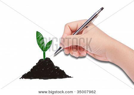 Human Hand Drawing