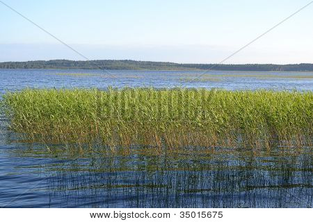 Kavgolovskoe lake