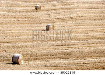 Golden Hay Bales