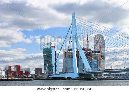 Erasmus Bridge In  Rotterdam . Netherlands