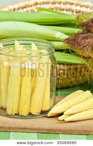 Corn for preserving
