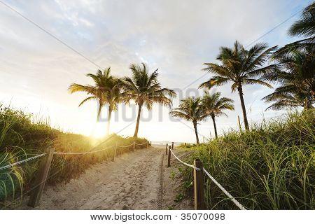 Path to Miami Beach
