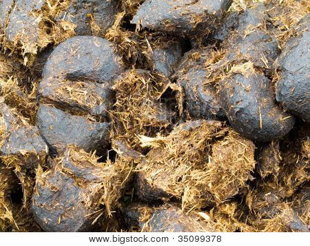 Close-up horse manure background texture pattern