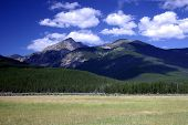 stock photo of rocky-mountains  - field and mountains in rocky mountain national park - JPG