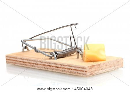 Mousetrap with piece of cheese isolated on white