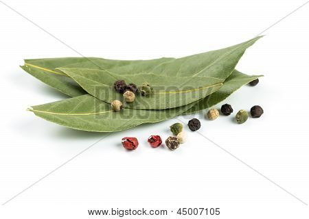 Bay Leaf And Pepper