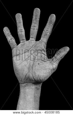 Hand On Black Palm - Five