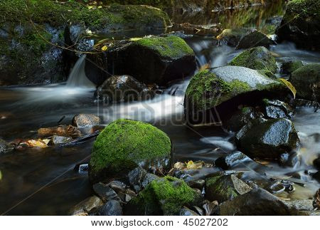Rocks covered by green moss in a river.