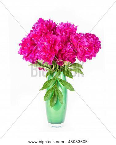 Peonía de flores