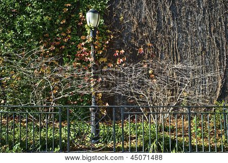 Fall City Lamp Post