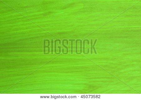A Light Green Texture