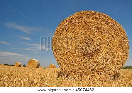 Straw bales on farmland with blue sky
