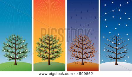 Four Seasons árboles