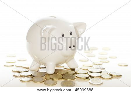 many euro coins
