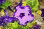 Oil Painted Purple Pansy Flower
