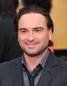 LOS ANGELES - JAN 27:  Johnny Galecki arrives to the SAG Awards 2013  on January 27, 2013 in Los Ang