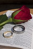 Wedding rings and red rose rest on a bible
