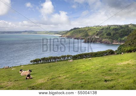 View Towards Slapton Sands