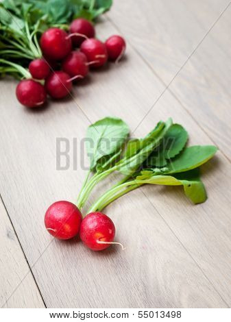 Freshly Harvested Radish