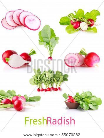 Set Juicy Radish With Green Leaves