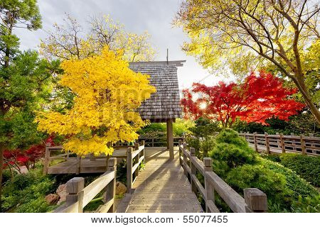 Pavilion Deck Surrounded By Autumn Foliage