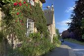 image of english cottage garden  - Rose covered thatched cottage - JPG
