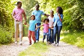stock photo of grandparent child  - Multi Generation African American Family On Country Walk - JPG