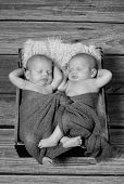 image of twin baby girls  - Two little baby girls sleeping in a cute pose - JPG