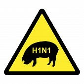 pic of swine flu  - Fully layered H1N1 swine flu hazard warning sign - JPG