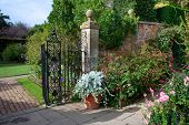 foto of english cottage garden  - Fine English country garden with fuchias and delphiniums - JPG