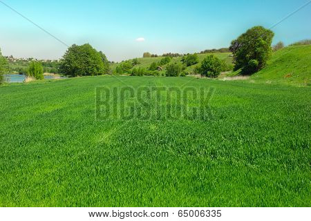 Landscape Of A Green Grassy Valley, Trees, Hills And Blue Sky And River