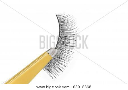 False Lashes And Yellow Pincers