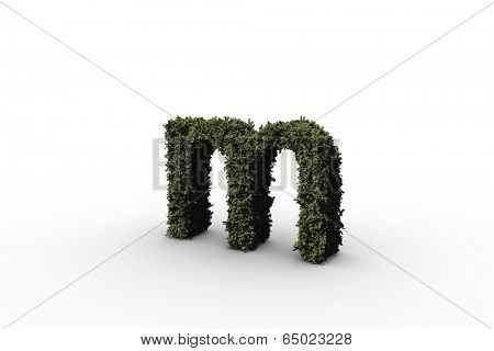 Lower case letter m made of leaves on white background